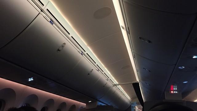 united 787  - 26