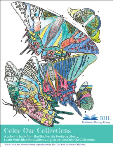 BHL_coloring_book