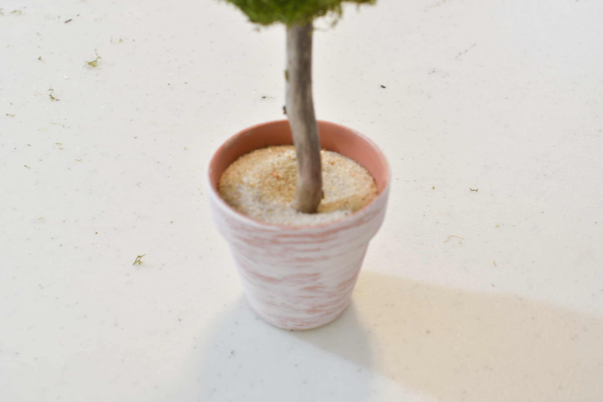 placing the twig trunk of a topiary tree into a flower pot full of sand