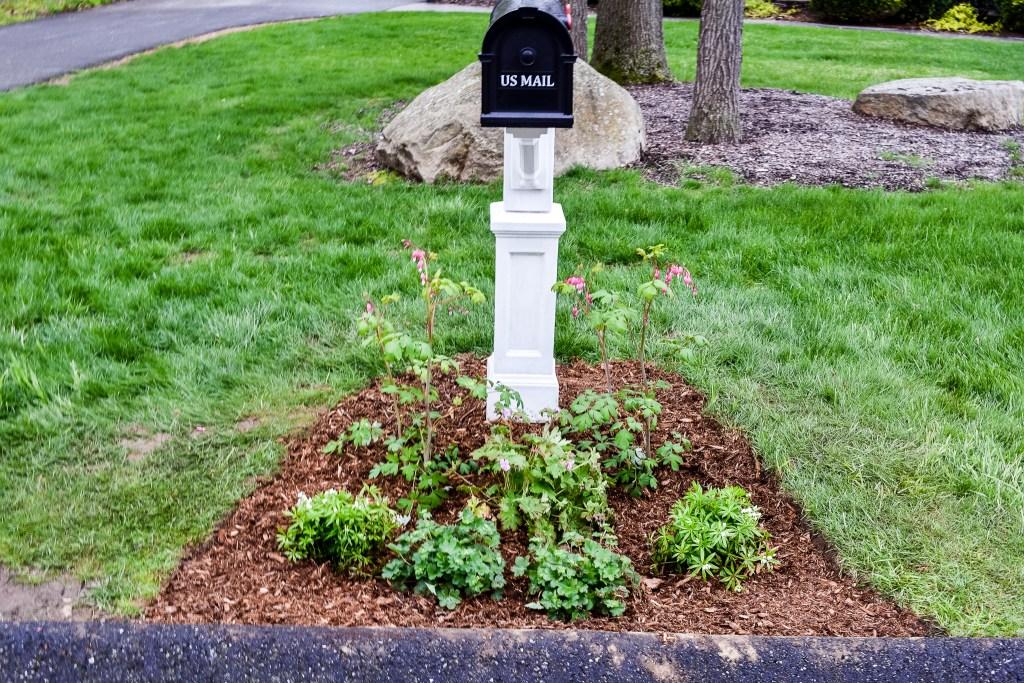 How to Create a Mailbox Garden