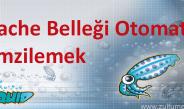 Centos'da Squid Cache Belleği Otomatik Temizlemek