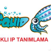 Squid İle Farklı İplerden Erişim