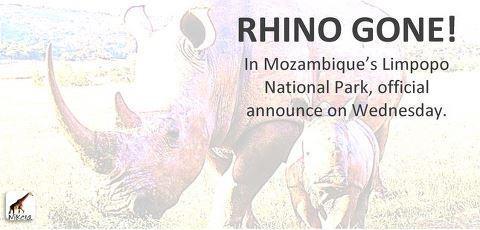 Thula Thula Rhino Poaching