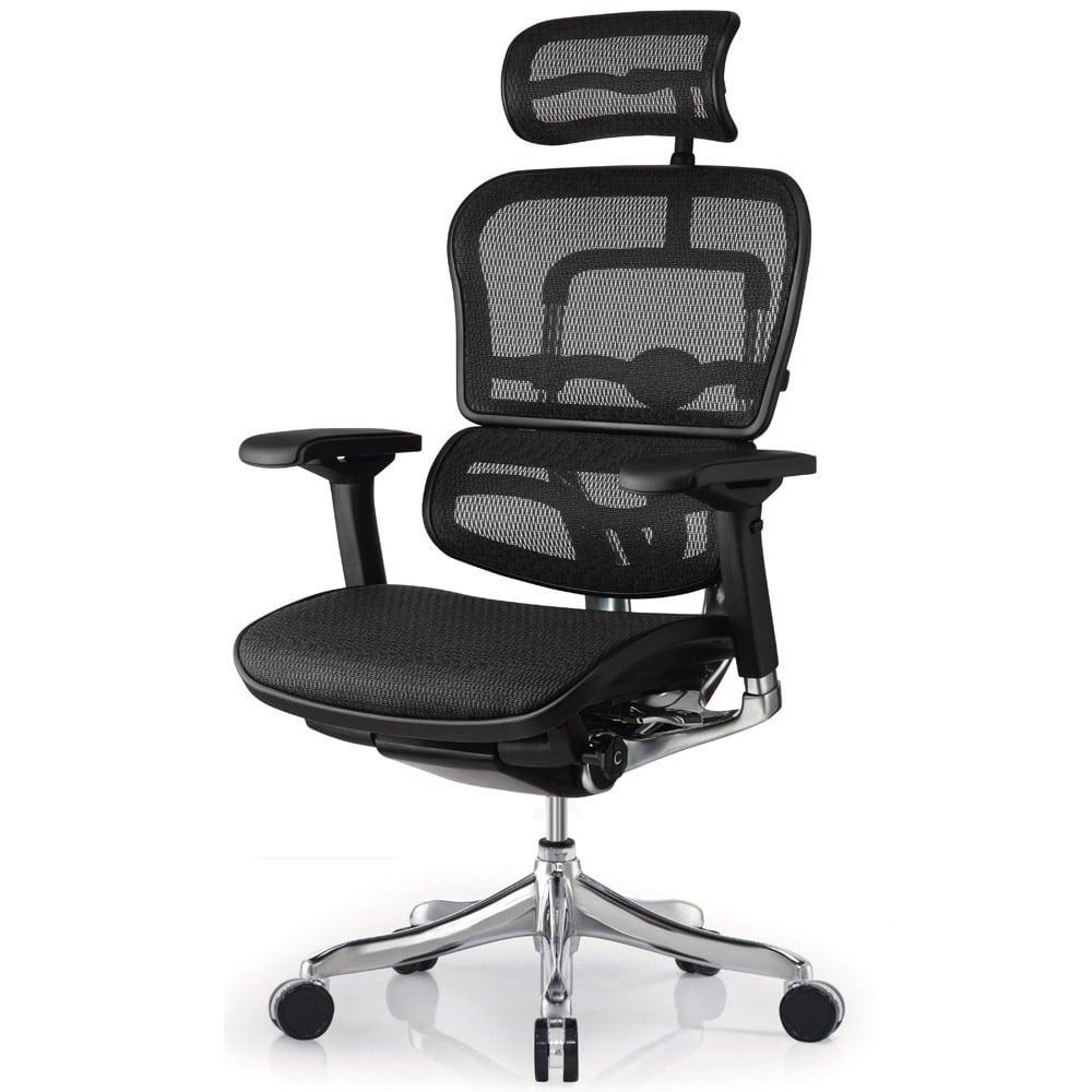 Modern Ergo Elite Mesh Swivel Chair With Headrest Black