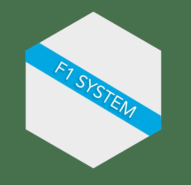 HEXAGONO F1 SYSTEM