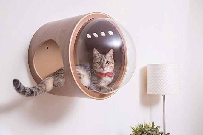Retro Futuristic Cat Homes