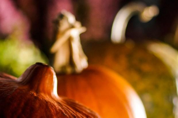 z widokiem na stół | jesienny stół