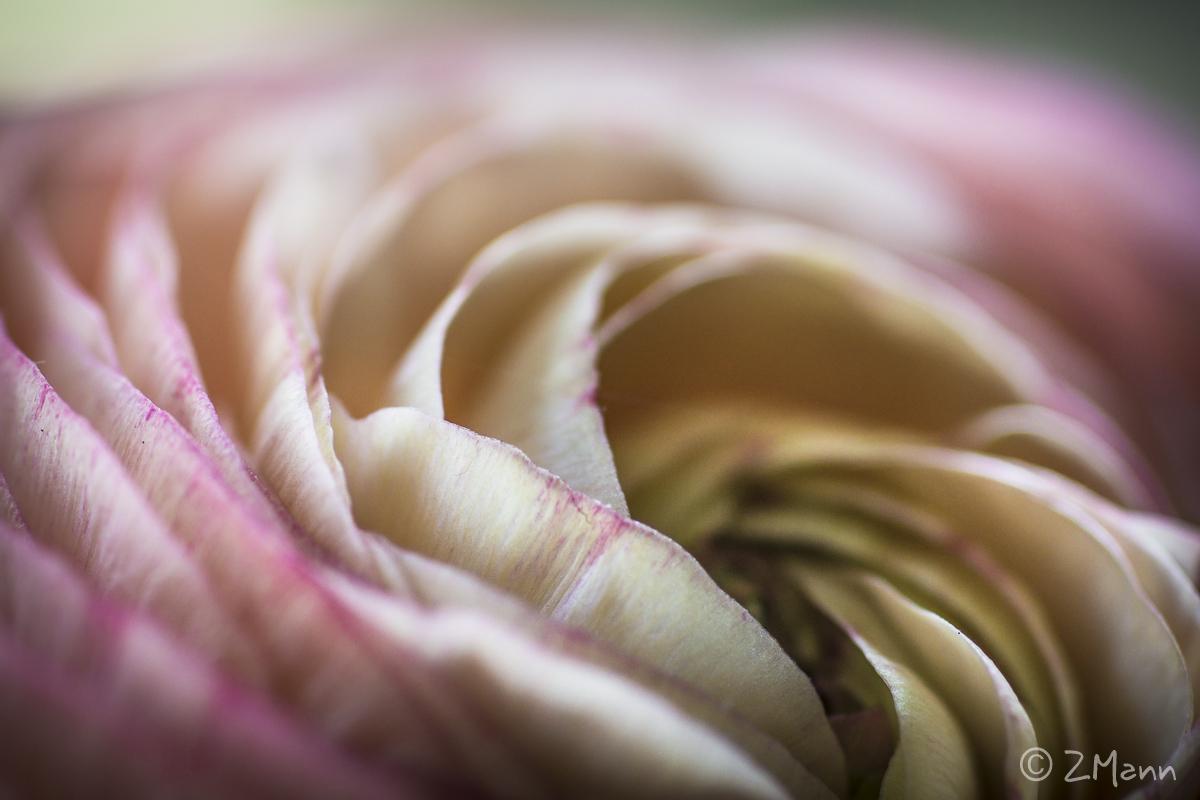 fotogaleria : zjawiskowe jaskry