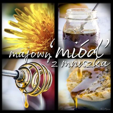 z widokiemna stół   |   miód mniszkowy, miód majowy, syrop z mniszka