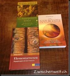 Naturgeisterbuch