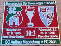 pin_ec65-66sion_rot