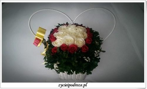kwiatki moje