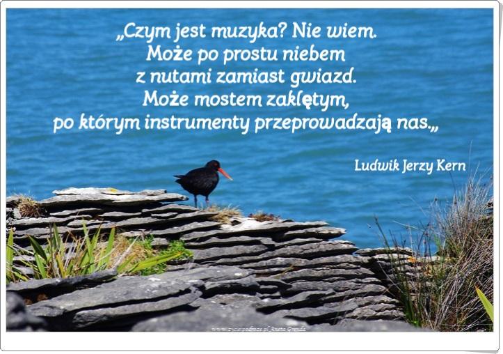 Muzyka To Dusza Wszechświata Cytaty Wybrane życie I