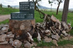 Taita Hills Kenia