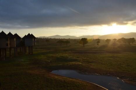 Wschód słońca na sawannie Kenia