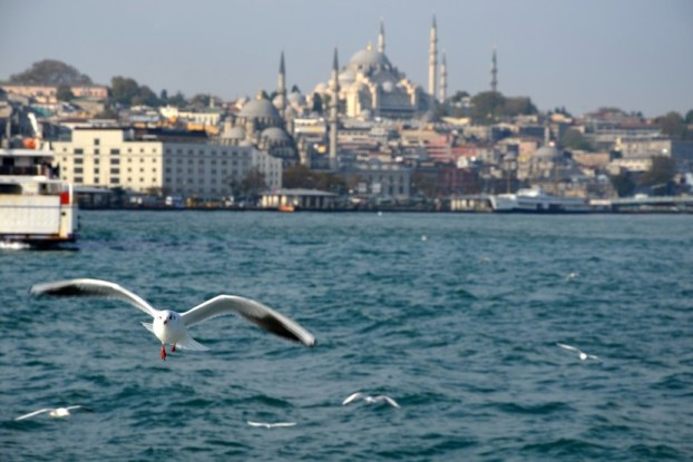Rejs do Kadikoy - widok na Meczet Sulejmana Turcja