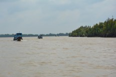 Delta Mekongu Wietnam