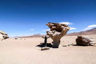 Arbol de Piedra wycieczka Uyuni