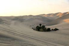 Oaza pustynia Peru