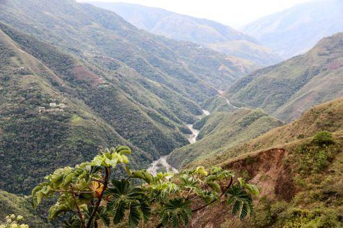 Rzeka na Drodze Śmierci Boliwia