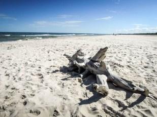 Plaża Słowiński Park Narodowy