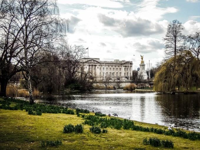 Buckingham Palace widok z parku