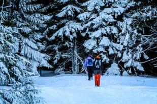 4 Niebieski szlak na Turbacz Gorce