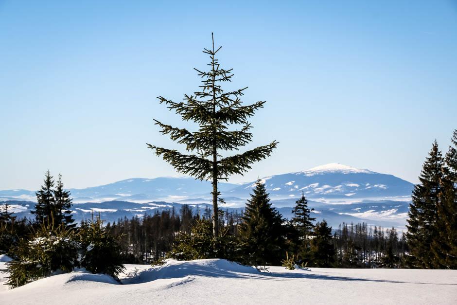 7 Widoki z Hali Turbacza Gorce