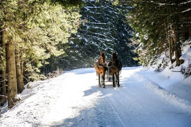 9 Droga nad Morskie Oko Tatry 2