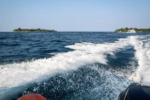 Maafushi Malediwy wycieczka snorkeling 2