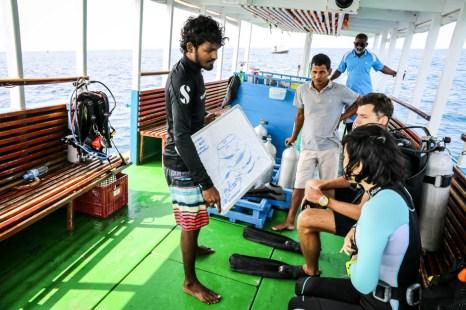 Malediwy nurkowanie 2