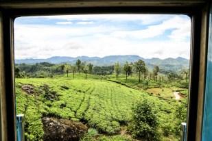Widoki z pociągu Sri Lanka 2