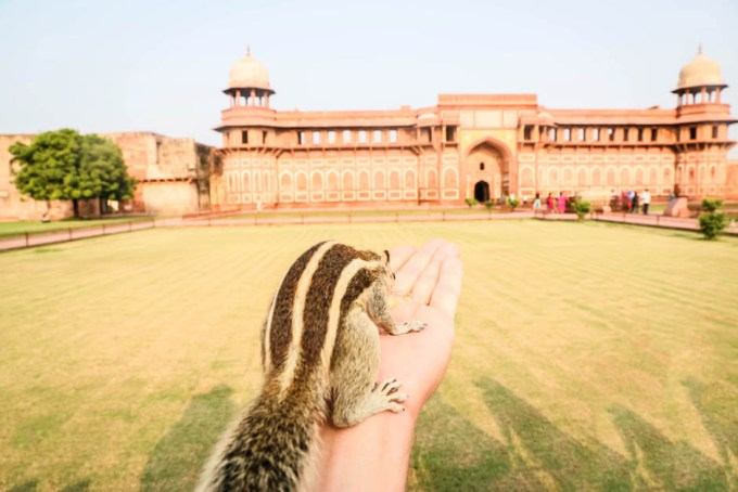 Indie Agra Fort rezydencje