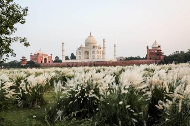 Indie Agra Taj Mahal z drugiego brzegu rzeki