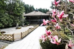 Nocleg z mnichami Koyasan 4