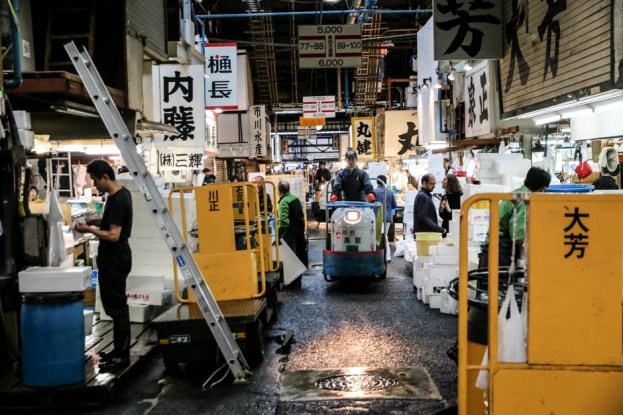 Targ Tsukiji Tokio hala hurtowa