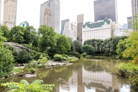 Oczko wodne Central Park