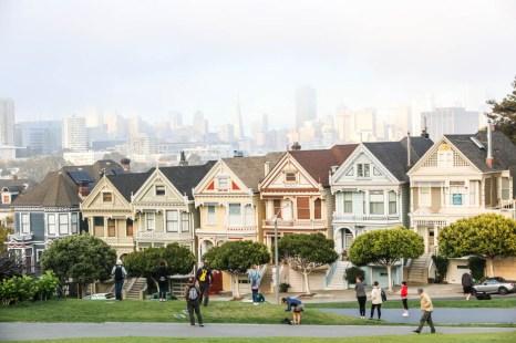 San Fransisco Painted Ladies