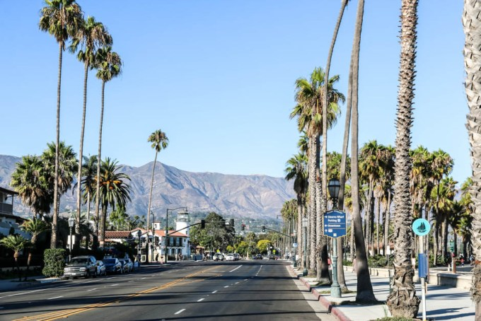 Santa Barbara wysokie palmy