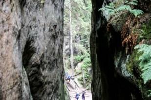 Skalne miasto Adršpach konary drzew