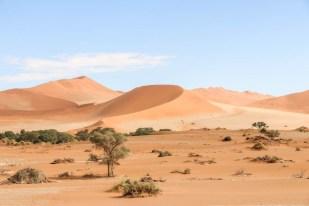 Big Mama Dune w Sossusvlei