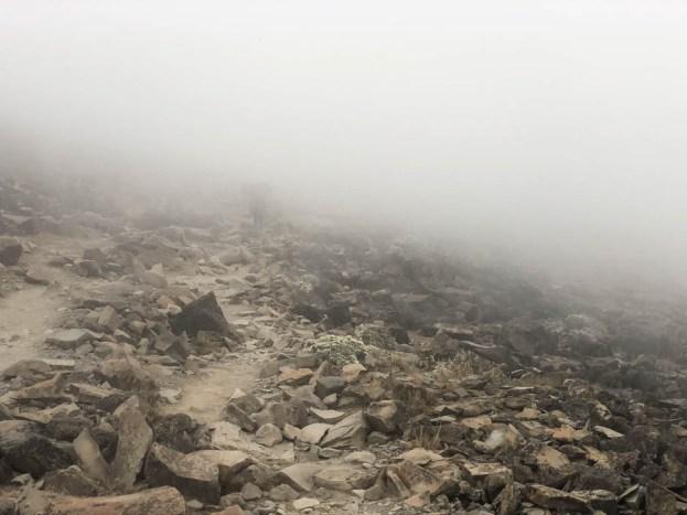 Tanzania trekking Kilimananjaro mgla