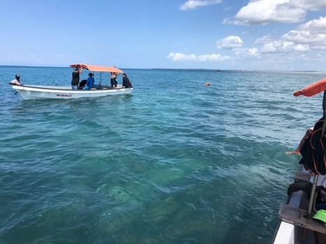 Zanzibar rejs snorkeling