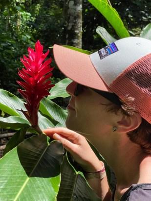 Palenque ruiny kwiaty