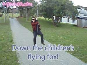 Down the children's flying fox!