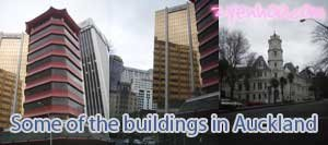 Some of the buildings in Auckland