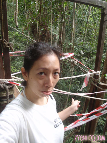 What! Part of the Canopy Walkway is closed :(