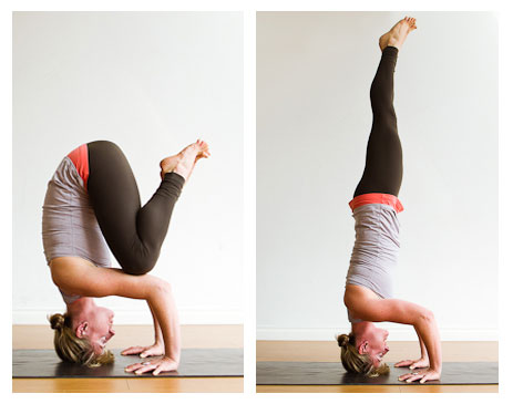 What a tripod and a tripod headstand in yoga should look like. I did not even get as far as the tripod.