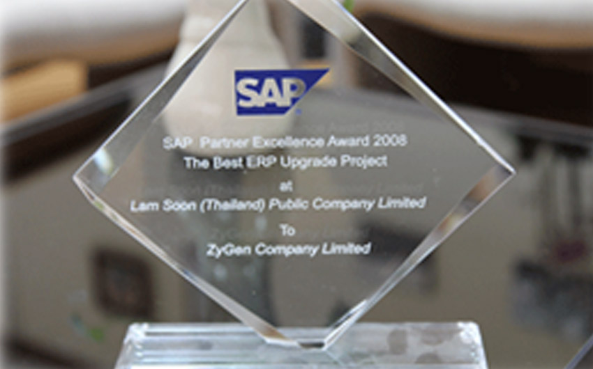 """SAP Summit 2008 participation and Award """"Best Upgrade"""""""