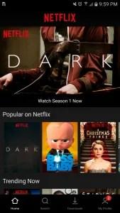 Netflix UI